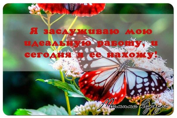 IOr_RpH4E9Y