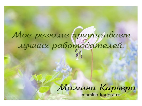 _OKPdaHCz3A